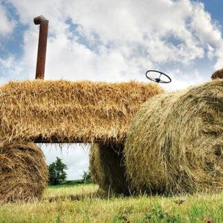 traditional graze & hay